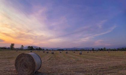 Cielo e tramonti su tela a Verdellino – Sofia Invernici