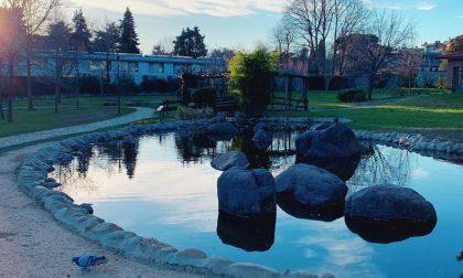 Oltre 400 mila euro per rinnovare il parco Turani e i giardini di via Rosselli e Trento