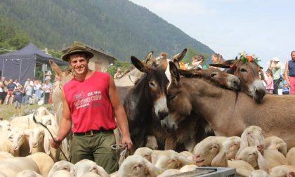 A Valcanale passa l'ultimo pastore E sarà un weekend di festa grande