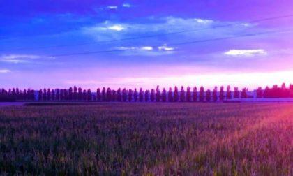 Campi, cipressi e un fascio di luce - Andrea Grigis