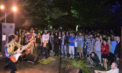 Quel festival segreto nel bosco (con tanto di band da San Diego)