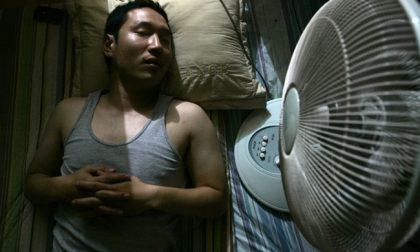 Cinque notizie che non lo erano Tipo i ventilatori killer in Corea