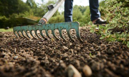 Giardinaggio, i lavori di fine estate