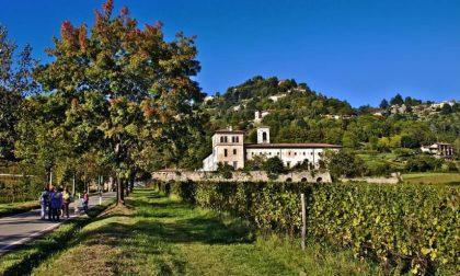 Astino, la Toscana a Bergamo - Luca Mauri