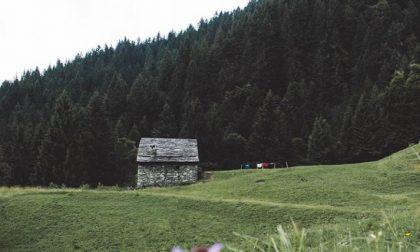 Bellezza solitaria (Val Sedornia) - Samuele Bonora