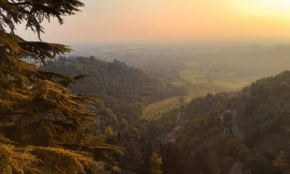 L'autunno al Parco dei Colli – Francesca Duccoli