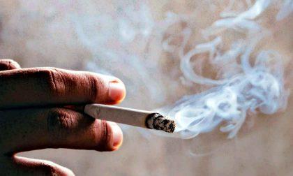 Il mondo sta andando... in cenere Ecco quanto fuma la nostra Terra