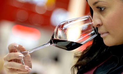 Gustare il vino buono come merita I corsi Onav a Bergamo e a Covo