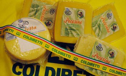 "A Forme la ""tavola degli inganni"" Finti formaggi italiani made in Usa"