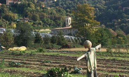 Bucolicamente Bergamo (Astino) - Bergamo da vedere