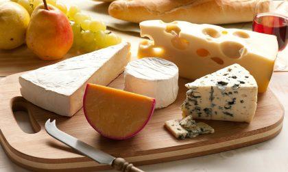 Good news dalla lontana Australia I formaggi non fanno così male