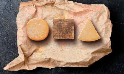 Forme, le Olimpiadi del formaggio portano 3.804 contendenti in città