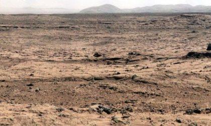 Cinque notizie che non lo erano Su Marte ci sono insetti che volano