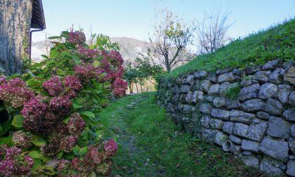 Castagne, borghi e belle cartoline direttamente dalla Val Brembana
