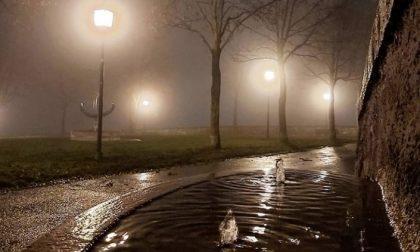 Tra nebbia e ricordi – Stefano Lavelli