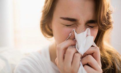 Trovata finalmente la cura per debellare il raffreddore