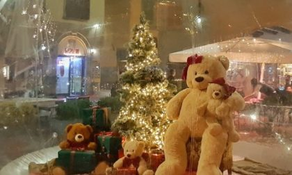 Peluche di Natale rubato in centro All'appello risponde Madama