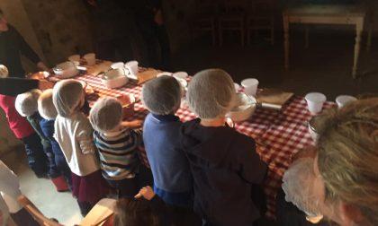 Studenti In VaCcanza in Val Taleggio Si impara l'arte di bergamini e casari