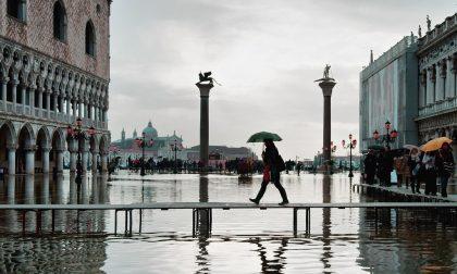 Venezia invasa dall'Acqua Granda A rischio i mosaici della basilica