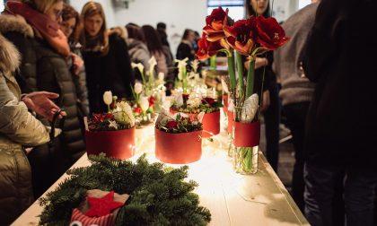 Factory Market di Natale ad Alzano e a breve anche un negozio online