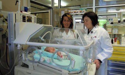 Alla Patologia neonatale, dove ogni bambino è Gesù bambino