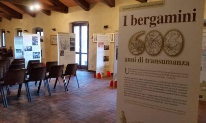 Ad Ardesio una mostra che celebra la transumanza con la «miniatura della memoria»