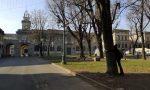 """Bergamo finisce su """"Mattino Cinque"""" per la battaglia contro l'abbattimento degli alberi di Piazza Dante"""
