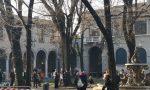 Piazza Dante, i video delle prime piante tagliate (la Polizia ha dovuto calmare i manifestanti)