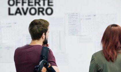 Per chi cerca lavoro ecco le offerte dei centri per l'impiego della Provincia di Bergamo