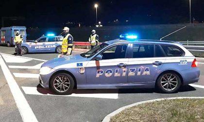 Non si ferma all'alt, tampona la polizia e fugge: seimila euro di multa e meno 60 punti
