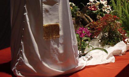 """A Gandino """"fiorisce"""" un'opera unica: è il Papa dell'artista Ivano Parolini"""