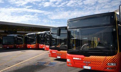 Al via il servizio estivo di autobus e tram: nuovi orari, nuova frequenza e servizio serale