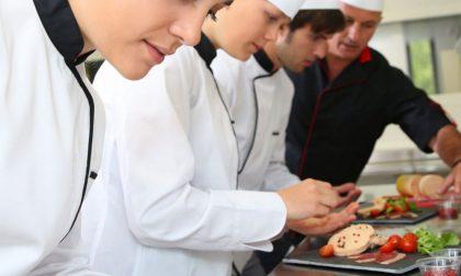 Lavoro, ecologia, formazione. Alla Provincia 40 mila euro per i giovani