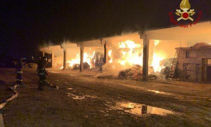 Incendio in un fienile a Stezzano: salvati 150 animali, in fiamme 400 quintali di fieno
