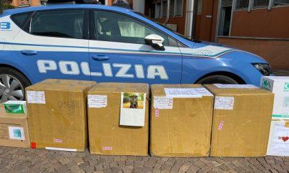 Il dono dell'ex ispettore Angelo Bani: da Singapore a Bergamo diecimila mascherine
