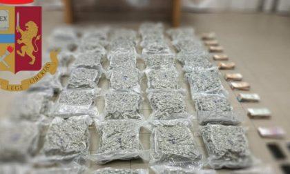 Nuova operazione contro il narcotraffico: 37,4 chili di marijuana sequestrati