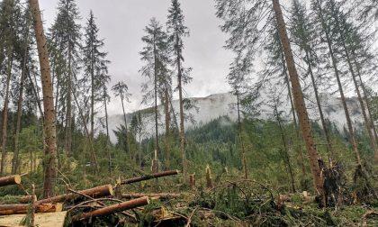 Otto milioni a 21 Comuni bergamaschi per i danni della tempesta dell'ottobre 2018