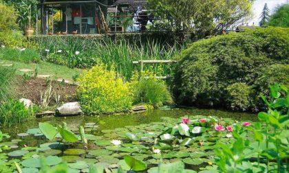 La riapertura degli orti botanici di Astino e Città Alta, tra novità e percorsi a tema