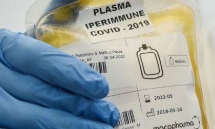 Progetto plasma iperimmune, raccolte mille sacche da Avis. E i bergamaschi spiccano