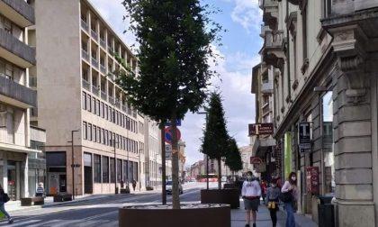 Le fioriere su via Tiraboschi hanno «ristretto» il marciapiede