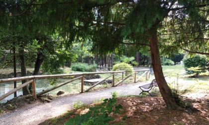 Chiuso fino a venerdì il Parco Marenzi per una serie di test sul cedro al suo interno