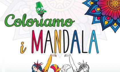 """Fino al 2 luglio in regalo con PrimaBergamo la bellissima raccolta di disegni """"Coloriamo i Mandala"""""""