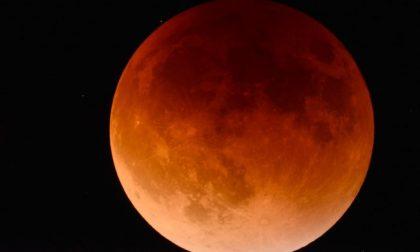 Tutti con il naso all'insù ad ammirare la luna fragola (tempo permettendo)
