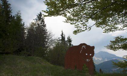Domenica inizia la festa della montagna. 43 escursioni tra luglio e ottobre