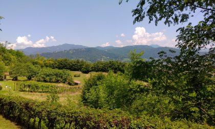 Bergamo ha un nuovo, enorme e bellissimo parco: aperti a tutti i Giardini di Palazzo Moroni