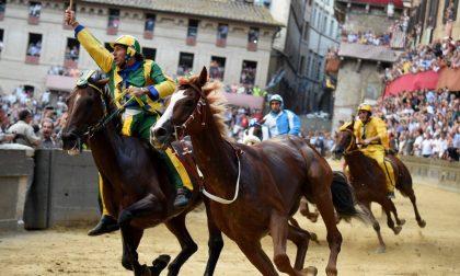 Il Palio come la macellazione islamica: a Siena se la prendono con L'Eco di Bergamo