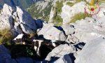 Due mucche cadono in un dirupo a Zorzone: una muore, l'altra salvata dall'elicottero