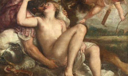 Un Tiziano dalla sensualità d'avanguardia per due mesi all'Accademia Carrara