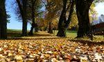 Dieci frasi in bergamasco sull'autunno