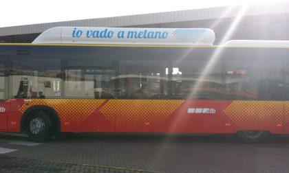 Bus ridotti causa didattica a distanza: cortocircuito a Bergamo